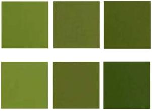 combinar verde aceituna